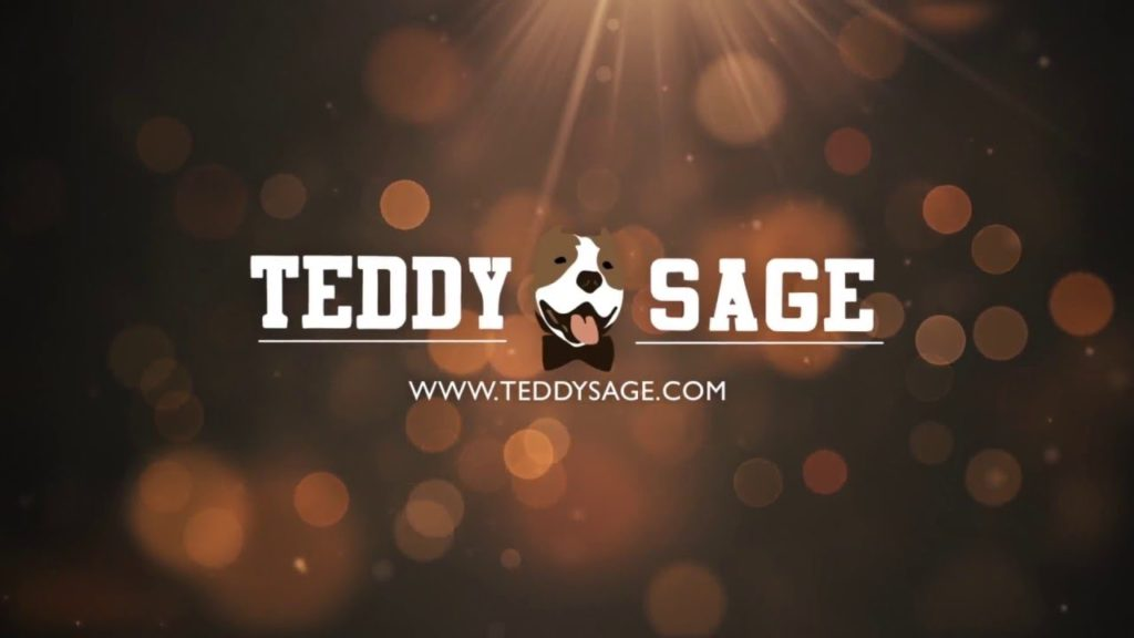 Teddy Sage Clothing