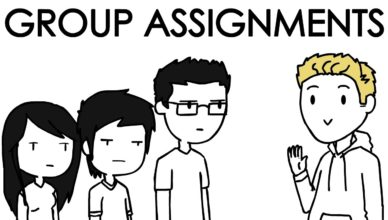 Domics Group Assignements